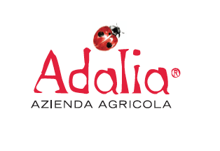 A NEW LOGO FOR ADALIA