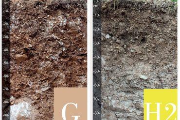 Around Soil