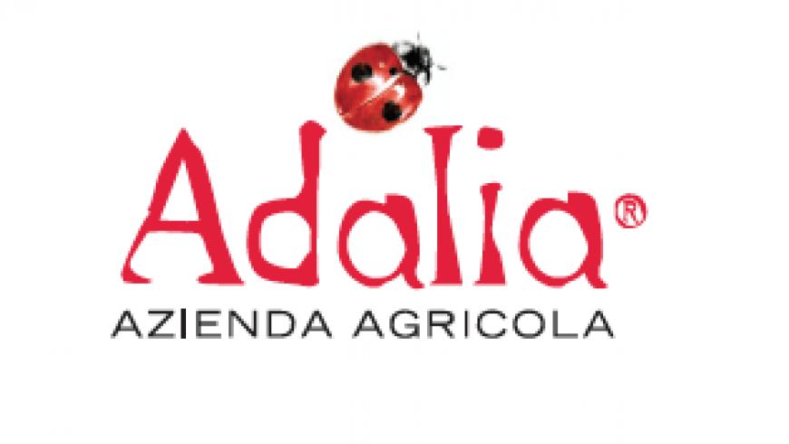 A NEW LOGO FOR ADALIA